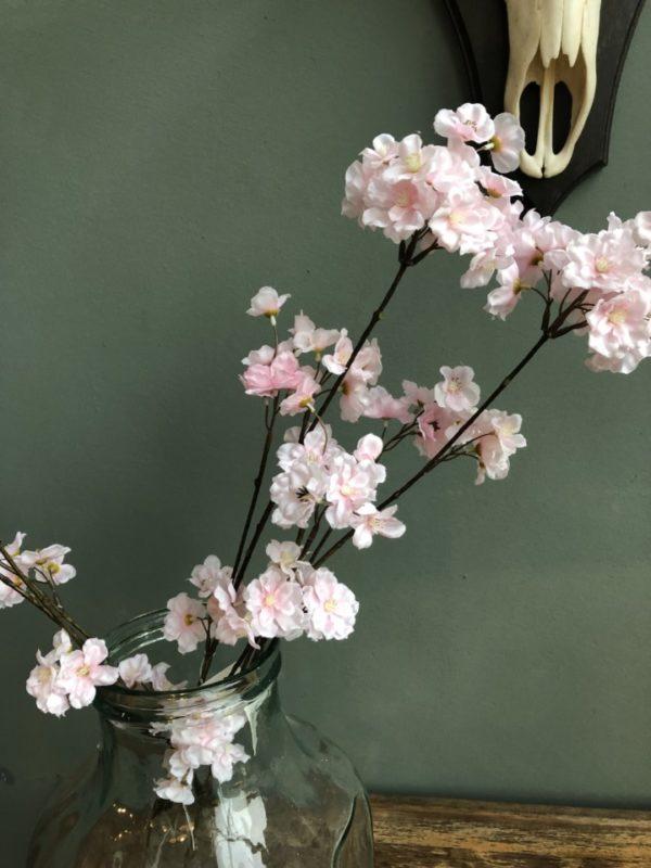Grote roze bloesems, bloemen