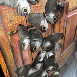 Pareloog vlinders in oude glazen stolp op houten voet