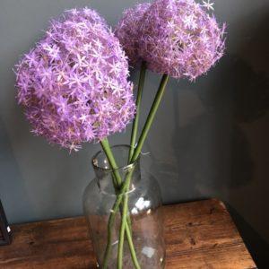 Grouss Purple Ronn Seidenblummen op gréng Steng