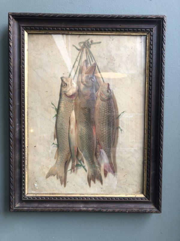Relief schilderij van vissen in mooie oude bruine lijst