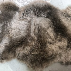 Bruine schapenbontjes