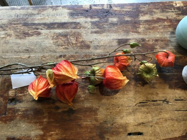 Prachtige zijden bloemen van Dutch Dreams